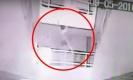 นศ.สาวเครียด โพสต์เฟซอยากโดดตึก-ร่างกระแทกพื้นดับ(คลิป)