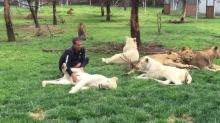คลิประทึก!! เสือดาวพุ่งจู่โจมพนักงานสวนสัตว์ แต่เสือโคร่งโผเข้าช่วย