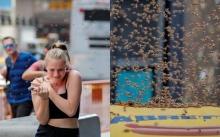 """มาได้ไง?! ตร.นิวยอร์กปิดถนนหลัง """"ผึ้ง"""" ฝูงใหญ่ยึดร่มร้านฮอตด็อกไทม์สแควร์ (คลิป)"""