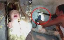 เผยวินาทีผ่าท่อชักโครกช่วยชีวิต ทารกแรกเกิดร้องโอดโอยติดอยู่ในท่อ!! (คลิป)