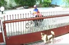 คลิปจะจะ บุรุษไปรษณีย์ส่งจดหมายเสร็จ หยิบหนังยางยิงใส่สุนัขที่เห่าอยู่ในบ้าน