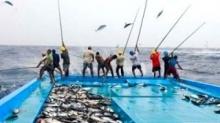 มาชมคลิป การหาปลาของชาวมัลดีฟ