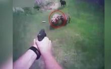 นาทีสุดท้ายของชีวิต!! ตำรวจลั่นไก่ยิงสุนัขที่พุ่งเข้าใส่!! (คลิป)