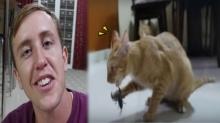 ดราม่าสนั่น!! ฝรั่งเกรียนอัดคลิปเอาแมวตัวเองมาสู้กับแมงป่องจิตใจทำด้วยอะไร! (คลิป)