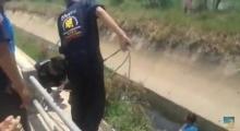 นาทีกู้ภัย ช่วยสาว น้ำหนักกว่า 100 กิโล ขึ้นจากคูน้ำ