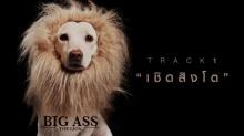 เชิดสิงโต - BIG AS (Official MV)
