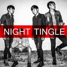 เกินความจำเป็น - Night Tingle