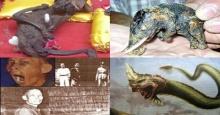 ความลับไม่มีในโลก เปิดตำนาน 7 เรื่องชวนขนลุกในประเทศไทย!