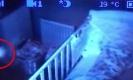ขนหัวลุก!! พ่อตั้งกล้องในห้องนอนลูก ถ่ายติดสิ่งลี้ลับ ตุ๊กตาขยับเองได้ (คลิป)