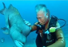 เพื่อนรักใต้ทะเล!!คุณลุงนักดำน้ำกับปลาที่สนิทกันมากว่า 25 ปีแล้ว