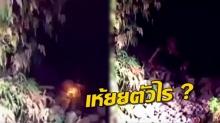 วินาทีขนลุก!! ชาย 2 คน เดินป่าเจอถ้ำ เอาไฟฉายส่องเข้าไปที่ปากถ้ำเห็น สิ่งนี้จะๆเต็ม 2 ตา!! (คลิป)