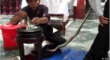 เมนูพิสดาร กินงูเห่าสดๆ ที่เวียดนาม ขนลุกเลย