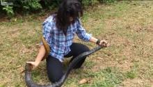 โอ้ยจะช๊อค!! หญิงสาววิ่งไล่จับงูยาวเกือบ 2 เมตรด้วยมือเปล่า
