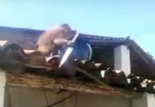เป็นงั้นไป!!ลิงเมาอาละวาดถือมีดวิ่งไล่เฉพาะผู้ชาย!!
